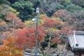 ⑧瀧安寺の紅葉