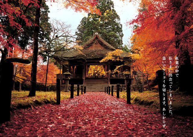 autumn_2008_02_img_001.jpg