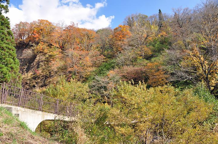 秋らしい色