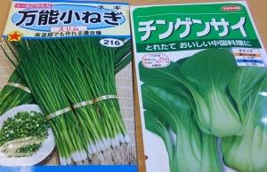 ネギと青梗菜の種