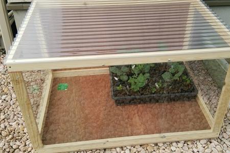 自作小型温室