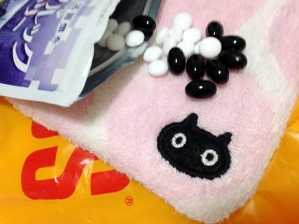 160328_cat03.jpg