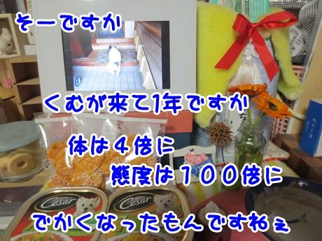 0313-01_20160313192059a1b.jpg