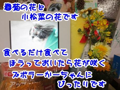 0326-01_2016032619582093a.jpg