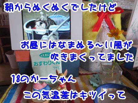 0402-01_20160402193817b84.jpg