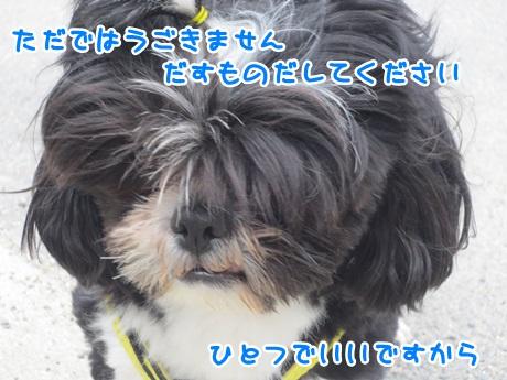 0411-04_201604111540204f5.jpg