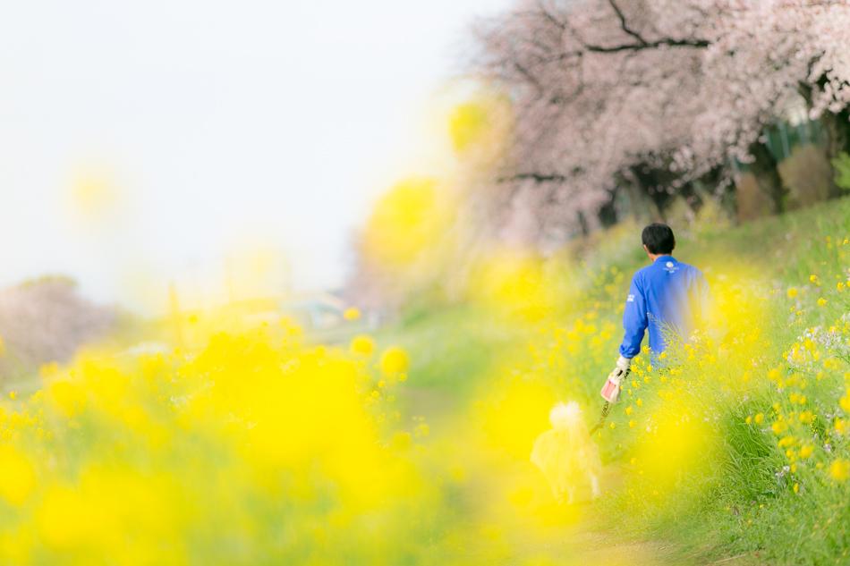 otowa-toyokawa-18.jpg