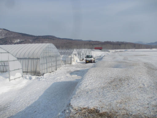 20160318_畑に融雪剤が撒かれる