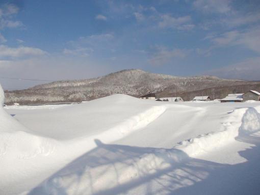 20160222_北露地積雪