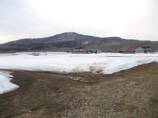 20160402_北露地積雪