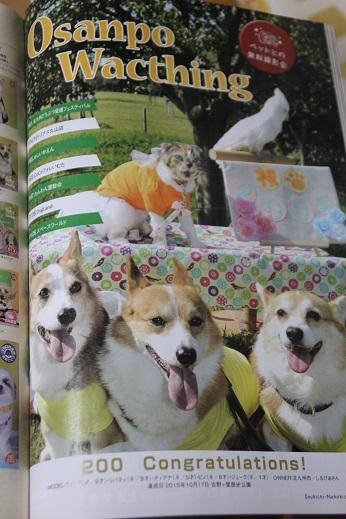 犬吉猫吉 5月6月号 その1