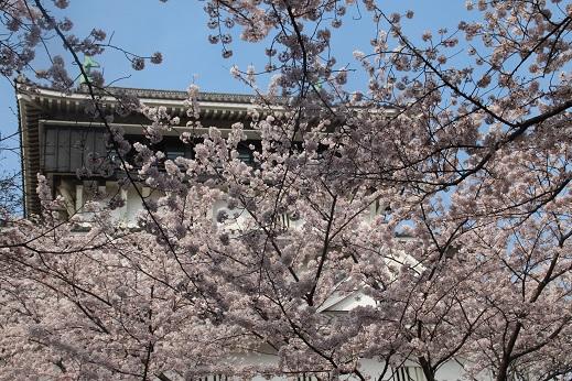 小倉城 2016-4-2-4