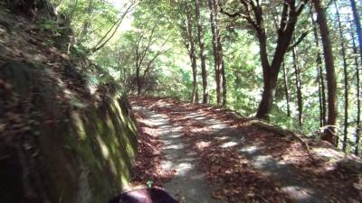 阿智公園へ続く道2