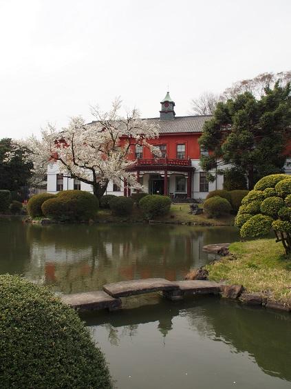 P3310671 日本庭園