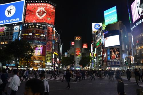 Shibuya Crossing - Shibuya, Tokyo