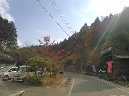 20151107_yabitu1.jpg