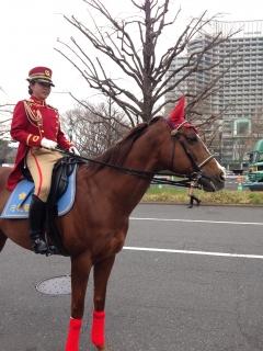 IMG_4050皇居騎馬隊