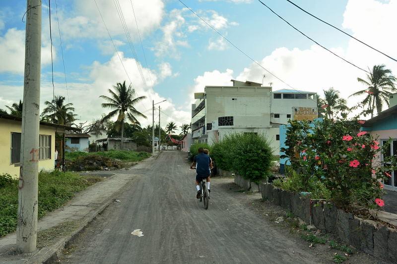 イザベラ島16