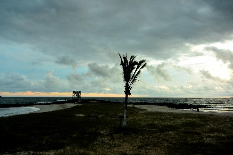 イザベラ島35