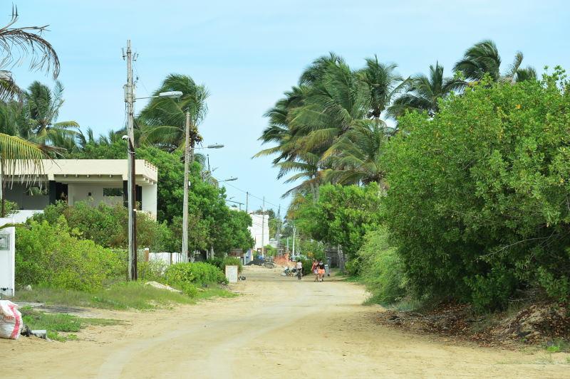 イザベラ島58