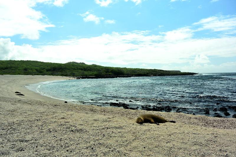 サンクリストバル島5