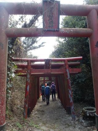 皇座山(山口県1等三角点) 011