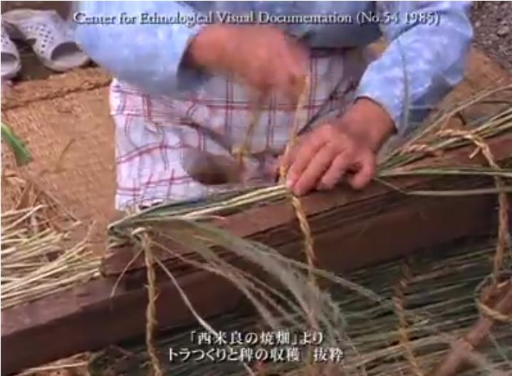 西米良の焼畑_トラづくり・編み