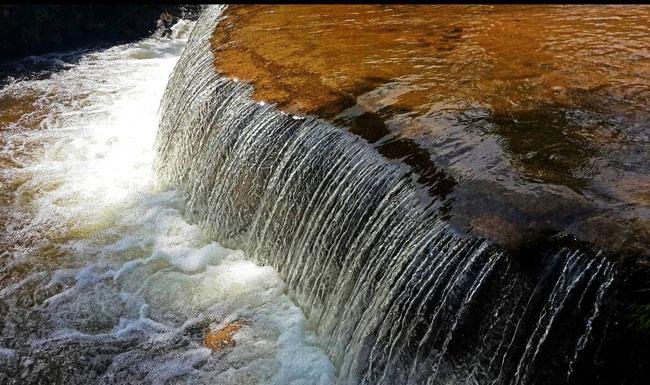 綺麗な川!