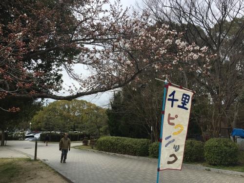 s-IMG_8620.jpg