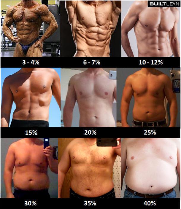 体脂肪率別写真(男性)