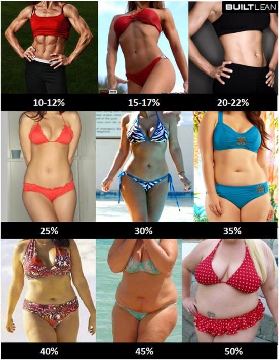 別体脂肪率別写真(女性)