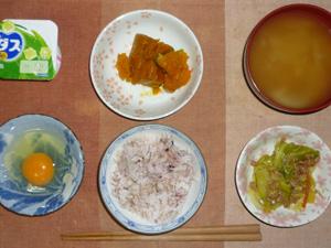 胚芽おぎ麦入り五穀米,生卵,キャベツと大豆肉の炒め物,カボチャの煮物,玉葱のおみそ汁,ヨーグルト