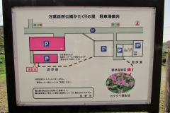 katakuri160320-103.jpg