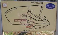 katakuri160320-104.jpg