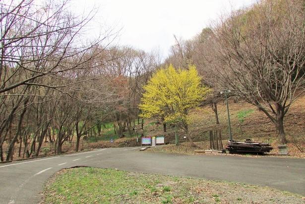 mikamoyama160320-120.jpg