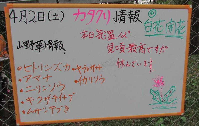 shimizuyama160402-108.jpg