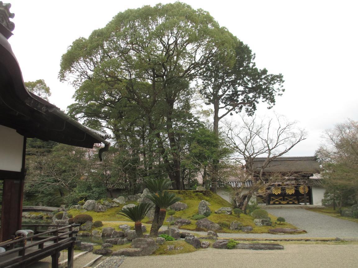 醍醐寺 枯山水2