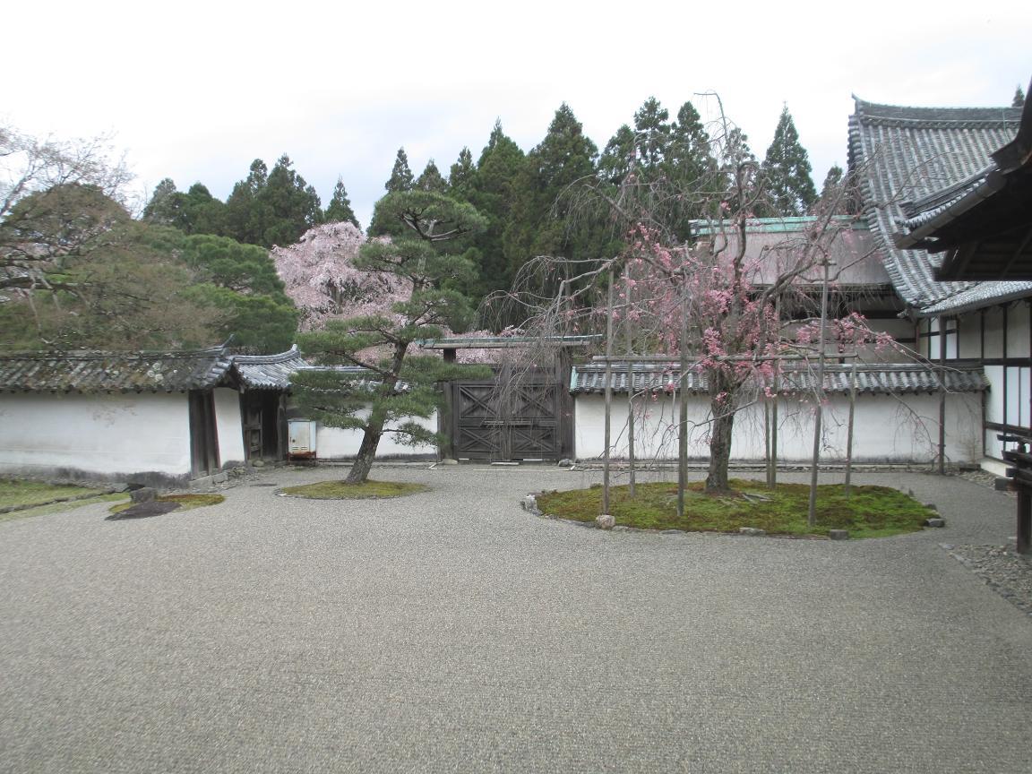 醍醐寺 枯山水1