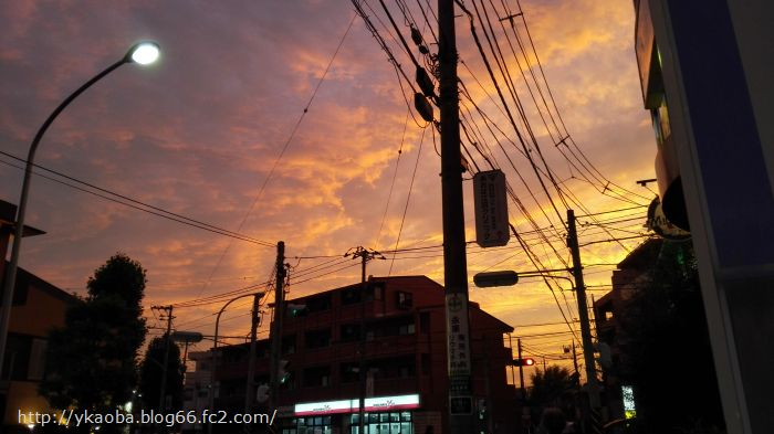 edaeki1_20151030170646a6a.jpg