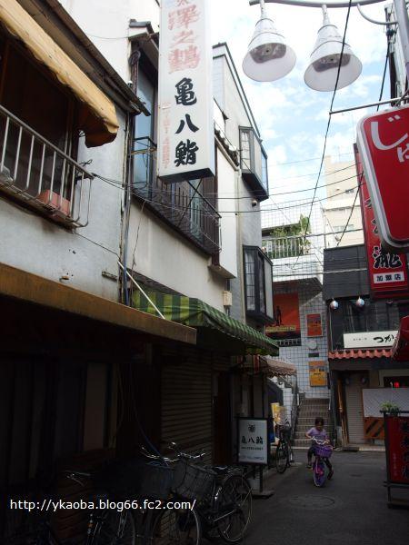 koyama12.jpg