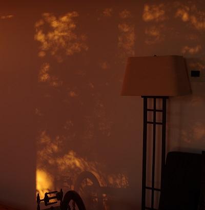 20151124オレンジの部屋
