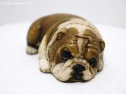 © 陽佳 2009「愛犬」DH000119.jpg