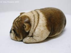 © 陽佳 2009「愛犬」DH000121.jpg