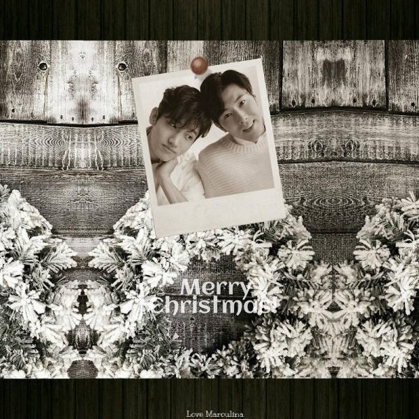 800-800-homin1-2015christmas-1a.jpg