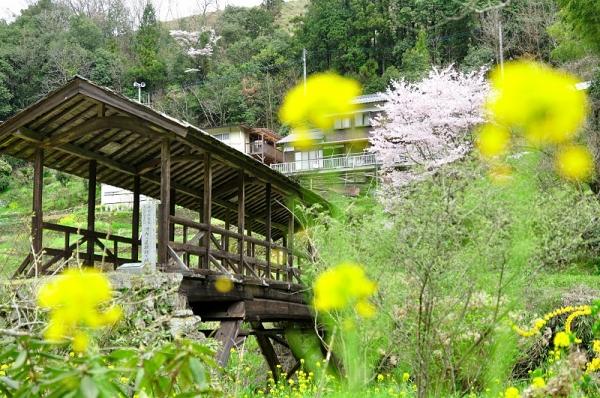 6田丸橋16.04.03