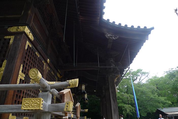 駿河の神社  三島大社  27
