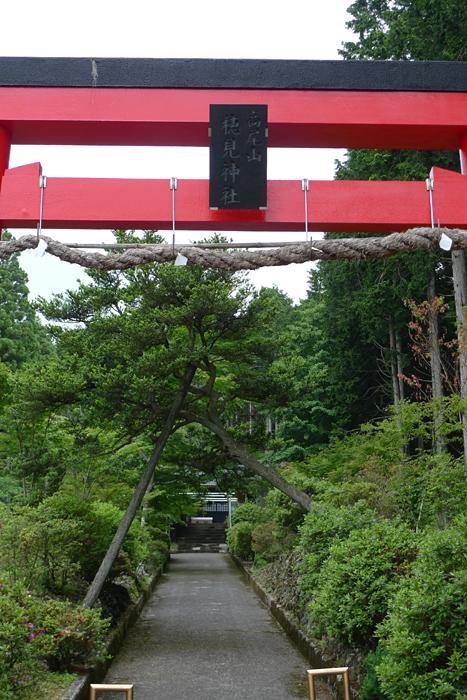 駿河の神社  穂見神社  2