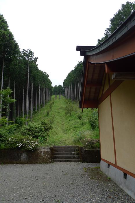 駿河の神社  穂見神社  4
