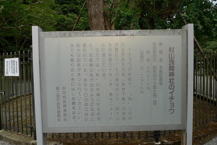 駿河の神社  村山浅間神社  10