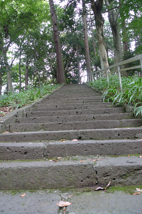 駿河の神社  山中浅間神社  11